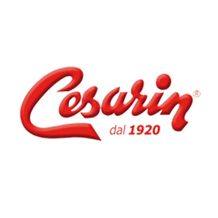 Logo Cesarin